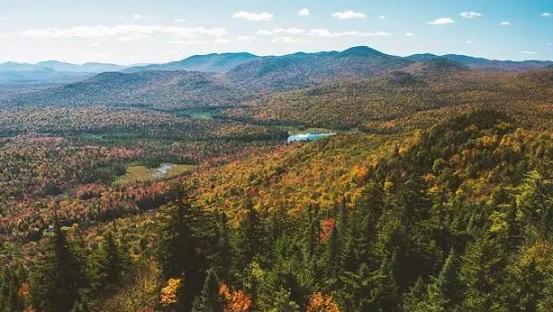 纽约州秋季红叶1