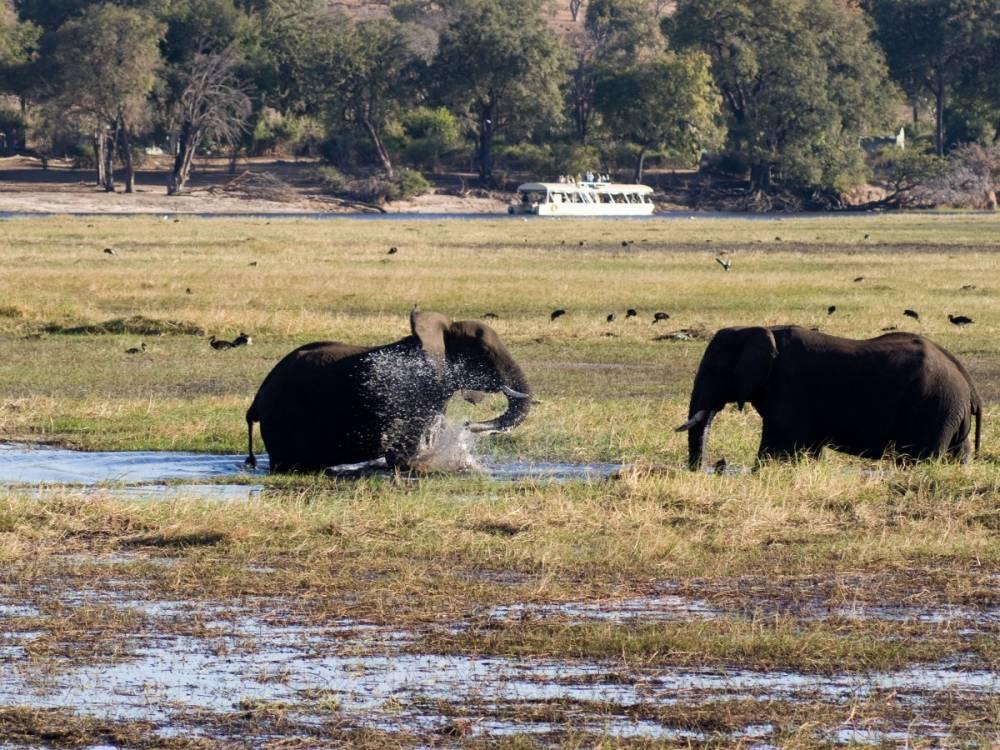 乔贝国家公园